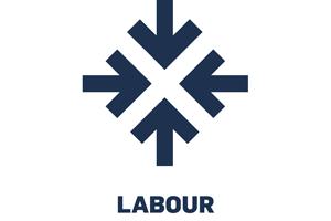 icon-labour-rgb